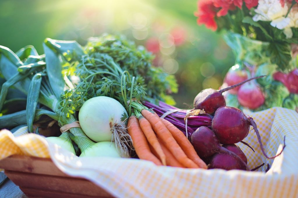 Nutritional counseling and weight loss in southern florida at back to mind